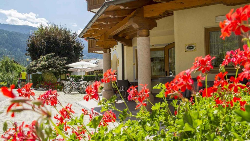 Hotel-Genzianella-Ziano-di-Fiemme-Trentino-esterno14