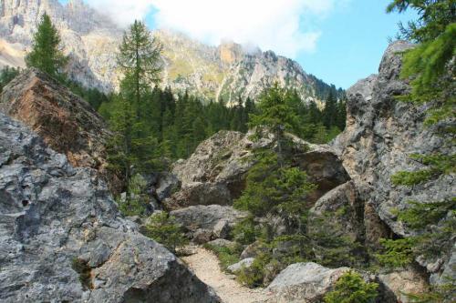 """Escursioni """"Labirinto del Latemar"""""""